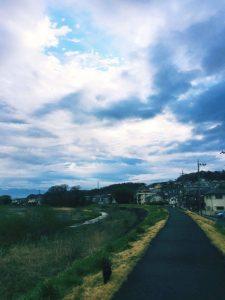 浅川 日野 散歩 土手沿い